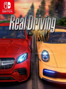 Real Driving Sim NSP SWITCH