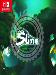 Flying slime NSP SWITCH